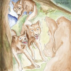 Bonnie Prince Billy – wolf of the cosmos