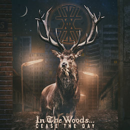 In The Woods – cease the day