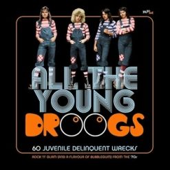 All the Young Droogs – 60 Juvenile Delinquent Wrecks, Rock 'n Glam (and A Flavour of Bubblegum) - v/a