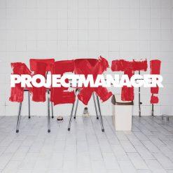 Projectmanager - NEXT