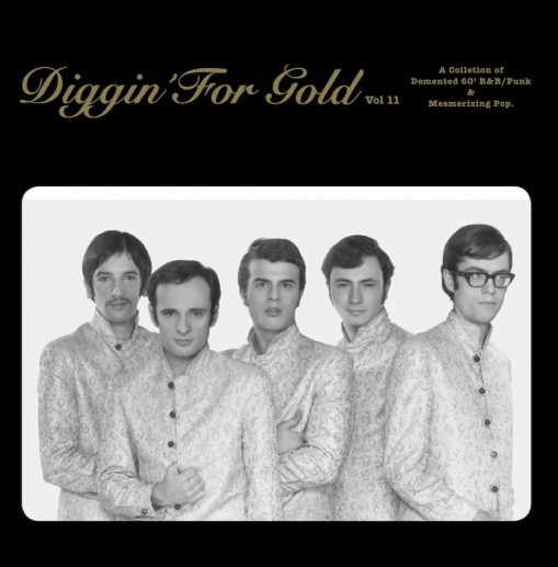 Diggin' For Gold vol 11 - a collection of demented '60 r&b/ punk & mesmerizing pop