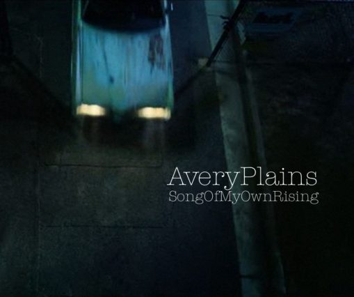Avery plains/ Whipster split 7""